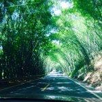 Carretera a shunan.